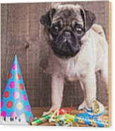 Happy Birthday Cute Pug Puppy Wood Print