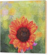 Happy Colorsii Wood Print