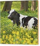 Happy Cow Wood Print