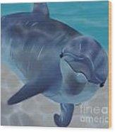 Happy Dolphin Wood Print