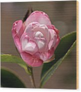 happy mother's day - Camellia Wood Print