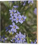 Happy Purple Wood Print