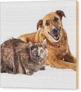 Happy Yellow Dog And Persian Cat Wood Print by Susan Schmitz
