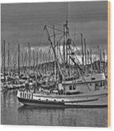 Harbor And Marina Monterey 2 Wood Print