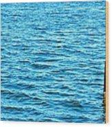Harbor Markers Wood Print