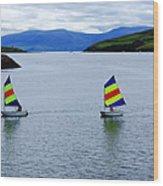 Harbour Sailing Wood Print