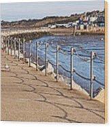 Harbour Wall Promenade Wood Print