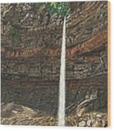 Hardraw Force Yorkshire Wood Print
