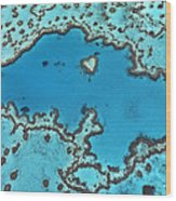 Hardy Reef On Great Barrier Reef Wood Print