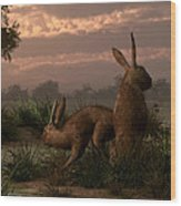 Hares In The Wetlands Wood Print