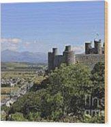 Harlech Castle Snowdonia Wood Print