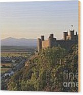 Harlech Castle Wales Wood Print