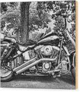 Harley D. Iron Horse Wood Print