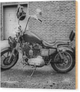 Harley In Black And White Wood Print