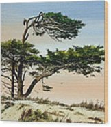 Harmony Of Nature Wood Print