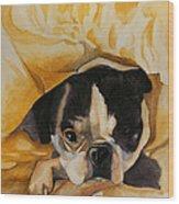 Harold's Bed Wood Print