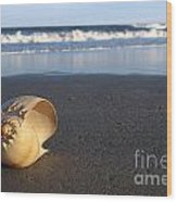 Harp Shell On Beach Wood Print