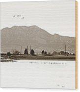 Harpers Lake Louisville Colorado Wood Print