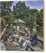 Harpist - Central Park Wood Print