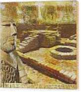 Harrappa Unesco World Heritage Site Wood Print by Catf