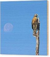 Harrier Moon Wood Print