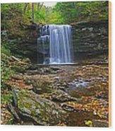 Harrison Wright Falls In Early Fall Wood Print