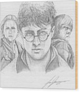 Harry And Friends Wood Print