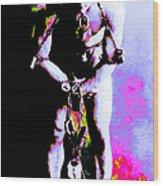 Harry Houdini - 20130208 Wood Print