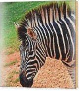 Hartman Zebra Wood Print