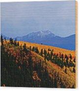 Harvard Gold Wood Print