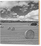 Harvest Fly Past Black And White Square Wood Print