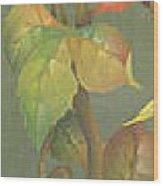Harvest Grapevine Wood Print