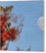 Harvest Moon Wood Print by Karen M Scovill