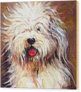 Harvey The Sheepdog Wood Print