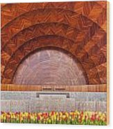 Hatch Memorial Shell Wood Print by Susan Cole Kelly