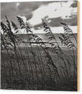 Hatteras Island Sunrise 18 9/3 Wood Print