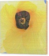 Hau Blossom Wood Print