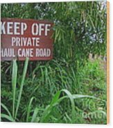 Haul Cane Road Wood Print