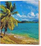 Haulover Bay Usvi Wood Print