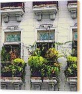 Havana Windows Wood Print