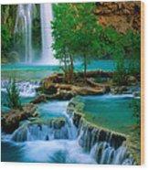 Havasu Canyon Wood Print