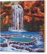 Havasu Falls Cheryln1955@gmail.com Wood Print