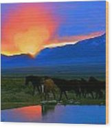 Have A Heart For Wild Horses  Wood Print