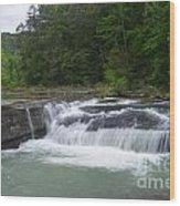 Haw Creek Falls Wood Print