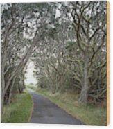 Hawaii, 1998 Wood Print
