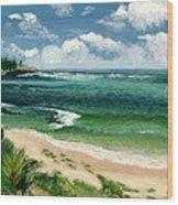 Hawaii Beach Wood Print