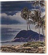 Hawaii Big Island Coastline V3 Wood Print
