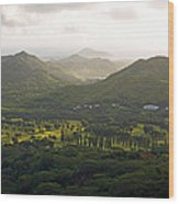 Hawaii Pacific University Wood Print