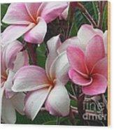 Hawaii Plumeria Wood Print