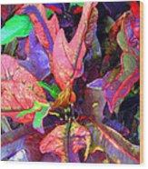 Hawaiian Foliage Wood Print
